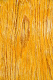 Old oak texture Royalty Free Stock Photo