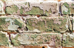 Old obsolete painted brick wall Royalty Free Stock Image