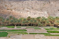 Old Omani village Royalty Free Stock Photography