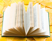 Old Open book with flower Stock Photography