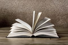 Old open book Stock Photography