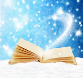 Old open book in the snow Stock Image