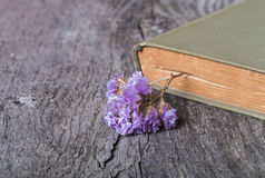 Old opened book and dry flower - romantic composition on a old g Royalty Free Stock Photography