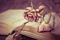 Old opened book and dry flower - romantic composition on a old g Royalty Free Stock Photo