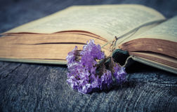 Old opened book and dry flower - romantic composition on a old g Stock Photo