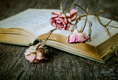 Old opened book and dry flower - romantic composition on a old g Royalty Free Stock Images