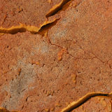 Old orange foam surface Stock Photos