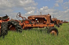 Old orange junked tractors. Old orange tractors lined up in a savage and junkyard Stock Photos