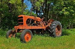 Old Orange Tractor in the Woods. An old orange tractor is parked in the long grass near a woods Stock Images