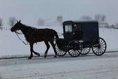 Old Order Amish Buggy Travels Through Snow Royalty Free Stock Image
