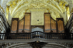 Old organ Stock Image