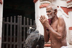 Old Oriyan Priest Praying. Royalty Free Stock Images