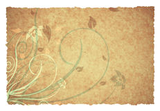Old ornament background Stock Photography