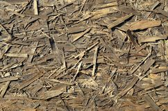 Old OSB boards are made of brown wood chips sanded into a wooden background. Top view of OSB wood veneer chipboard background, ti. Ght, seamless surfaces Royalty Free Stock Images