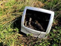 An old and out of date computer monitor that has been dumped in wasteland in a fly tipping or waste concept image. An old computer that has been smashed, broken royalty free stock image