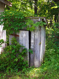 Old Outhouse and Ivy Stock Image