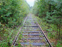 Old overgrown railroad Royalty Free Stock Images