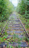 Old overgrown railroad Royalty Free Stock Photo