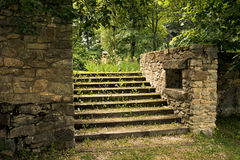 Old overgrown stone stairs in the park Royalty Free Stock Photography