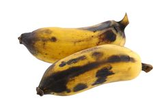 Old and overripe Nam Wah Banana Stock Images