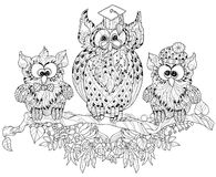 Old Owl  on tree branch with small owls. Royalty Free Stock Photography