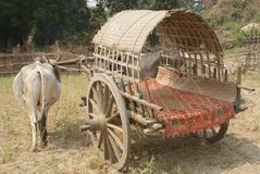 Old ox cart used for transportation in rural Burma Stock Photography