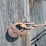 Old padlock on the  doors Stock Images