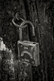 Old padlock hanging on the rotting jamb. Black and white close up Royalty Free Stock Image