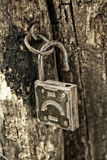 Old padlock hanging on the rotting jamb close up. Old padlock hanging on the rotting jamb Royalty Free Stock Photography