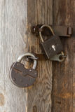 Old padlocks. The old locks hanging on an old wooden door Stock Photos