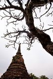 Old pagoda and died tree. Buddhism tower with gray sky on background Royalty Free Stock Photos