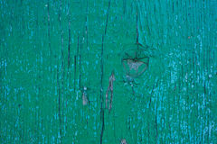 Old paint on a board Stock Images