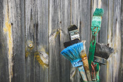 Old paint brushes Stock Image