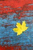 Old paint with leaf Stock Image