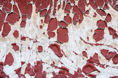 Old paint peeling from the wall Stock Photography