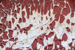 Old paint peeling from the wall Royalty Free Stock Photo