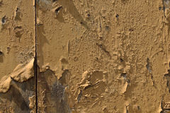Old paint. Texture paint on an old wooden door Royalty Free Stock Image