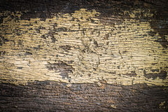 Old painted cracked peeling wood texture Royalty Free Stock Image