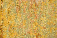 Old Painted Cracks Background, Cracked Paint Texture on Wood Wal. L Royalty Free Stock Images