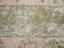 Old painted floor Royalty Free Stock Image