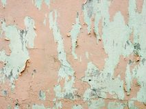 Old painted peach wall background. W stock image