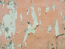Old painted peach wall background. W w royalty free stock photos