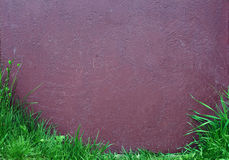 Old painted surface with green grass Royalty Free Stock Images