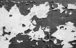 Old painted wall. Black and white texture Stock Photo