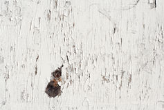 Old painted white wood. Stock Photography
