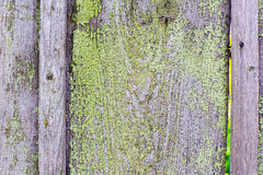Old painted wood  texture background.  Stock Photography