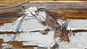 Old painted wood. Wooden piece with old paint coming off Royalty Free Stock Photography