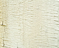 Old painted wooden board background. Old painted white wooden board background Stock Photography