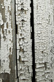 Old painted wooden board. Old painted white wooden board background Royalty Free Stock Image