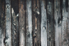 Old painted wooden fence background. Texture for design Royalty Free Stock Photo